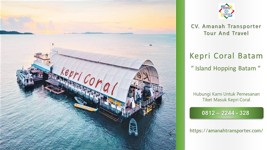 One Day Trip Kepri Coral