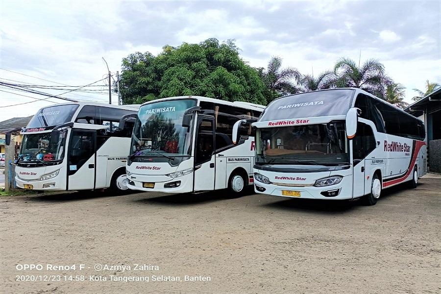 Sewa Bus Pariwisata Jakarta - RedWhite Star Primajasa